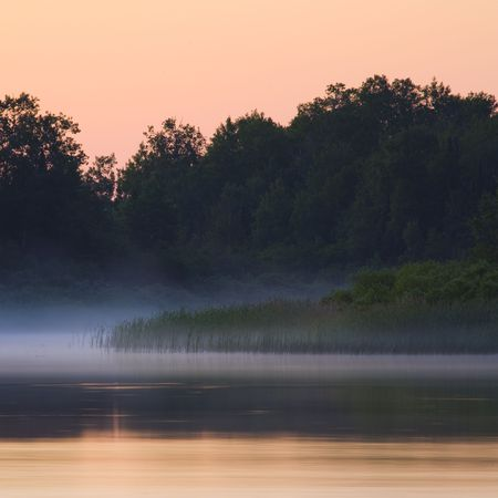 Forest and misty morning stillness on the edge of Fish Lake Minnesota