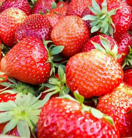 closeup: Fresh strawberries. Close-up.