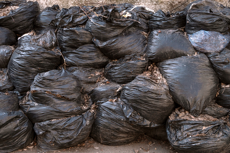 Large pile of garbage or leaves in black plastic bags lies in outdoors on an asphalt surface. The concept of pollution environment. Outdoors. Stock Photo