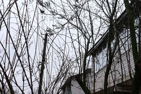Old houses on street in poor village in the evening in cloudy weather. Among trees. Electric pole with wires.Ukraine. Europe.