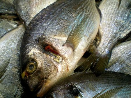 fresh raw fish for sale in the market Stock Photo - 690977