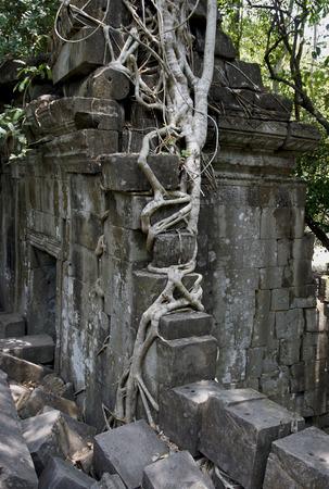 siem reap: Cambodia. Siem Reap. Temple Beng Mealea.