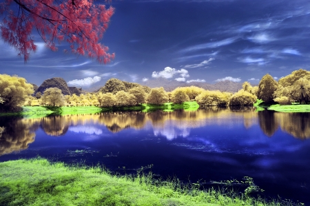 nature background infrared image at lakeside with multiple colour