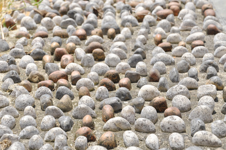 Pebble Stone Texture On Pavement For Foot Reflexology Pathway  photo