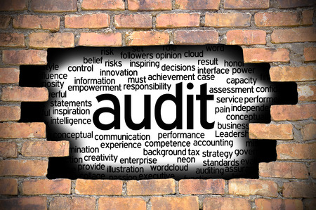 performed: Business Concept  Hole In The Brick Wall Reveal Word Cloud Of Audit And Its Related Words.