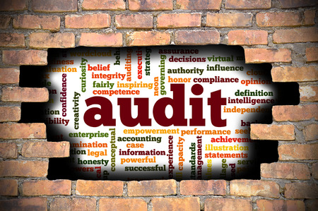 reveal: Business Concept  Hole In The Brick Wall Reveal Word Cloud Of Audit And Its Related Words.