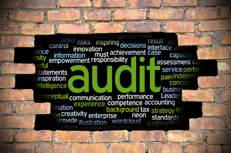 seeks: Business Concept  Hole In The Brick Wall Reveal Word Cloud Of Audit And Its Related Words.