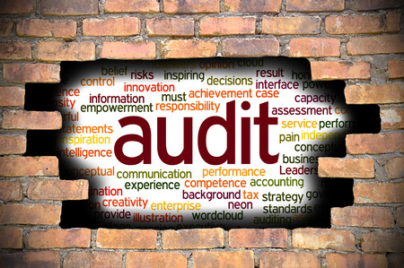 reveal: Business Concept - Hole In The Brick Wall Reveal Word Cloud Of Audit And Its Related Words.