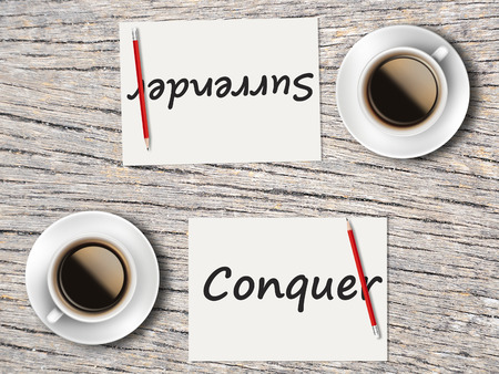 comparisons: The Business Concept : Comparison between conquer and surrender   .