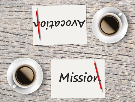 avocation: The Business Concept : Comparison between mission and avocation   .