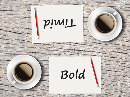 timid: The Business Concept : Comparison between bold and timid   .