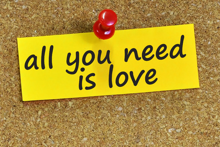 all love: all you need is love word on yellow notepaper with cork background.