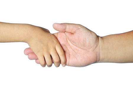 adult hand: kid hand hold adult fingers isolated on white.