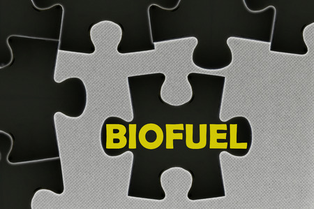 biodiesel: The black jigsaw puzzle written word time to biofuel. Stock Photo