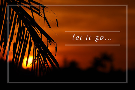 Inspirational motivating quote on silhouette of coconut frond toward sun during sunset. let it go