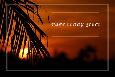 Inspirational motivating quote on silhouette of coconut frond toward sun during sunset. make today great