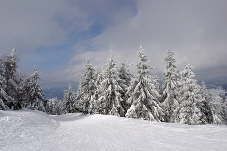 Carpathian Mountains are located in the Western Ukraine and take over 4% of the territory of Ukraine. photo