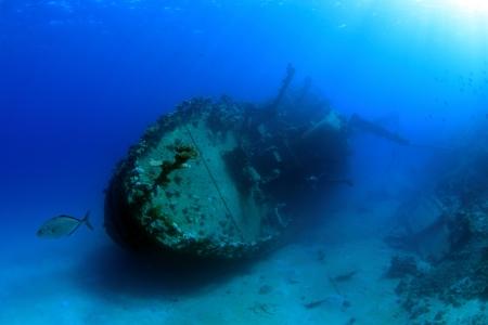 Diving in the Red Sea Banco de Imagens