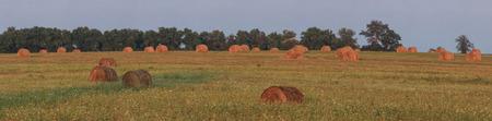 haystacks photo