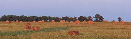 haystacks: haystacks Stock Photo
