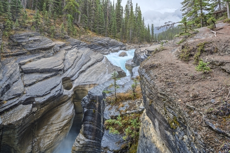 Nature Canada photo