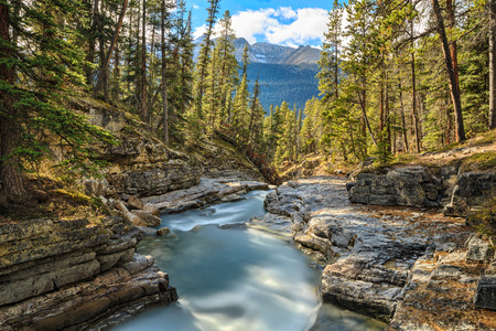 Beauty Creek, Icefields Parkway, Alberta, Canada photo