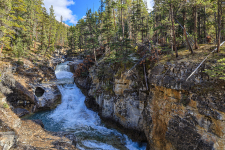 Beauty Creek, Icefields Parkway, Alberta, Canada