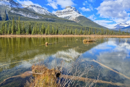 Rampart Pond, Icefields Parkway, Alberta, Canada Stock Photo