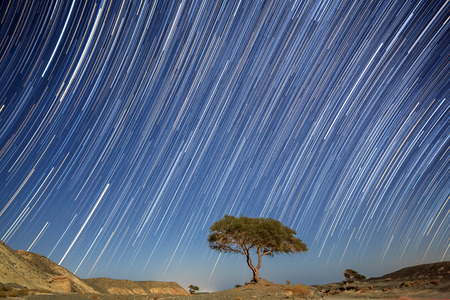 marsa: Star tracks in Marsa Alam, Egypt
