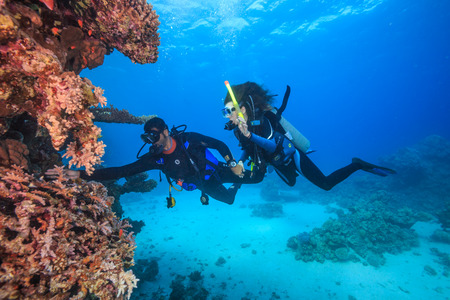 The discovery of the underwater world Standard-Bild