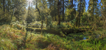 green park: Sol Duck , Olympic National Park, USA