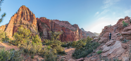 Zion National Park Standard-Bild
