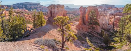 Bryce Canyon Standard-Bild