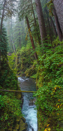 Sol Duc ,  National Park, USA