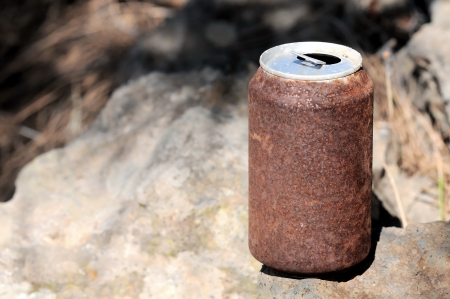 Old Rusty Can on the Floor into the Wild photo