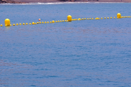 Some Yellow Floaters over the Blue of the Atlantic Ocean photo