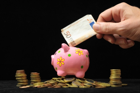 Saving Money with One Pink Piggy Bank photo