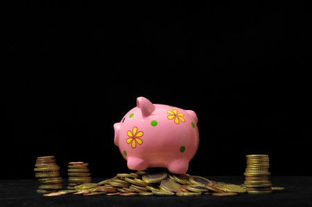 Save Money with One Pink Pig Piggy Bank photo