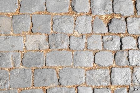 Brick Texture Path Made of Small Grey Bricks