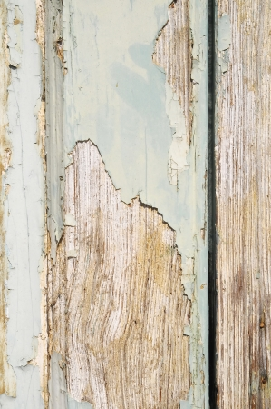 Vintage Door Wood Painted Peeling Texture on a Sunny Day photo