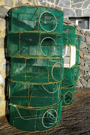 Empty Green Net Fish Traps on a Pier photo