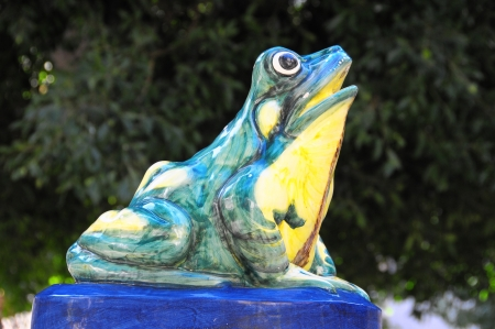 CloseUup of the Frog Shaped Water fountain Stock Photo