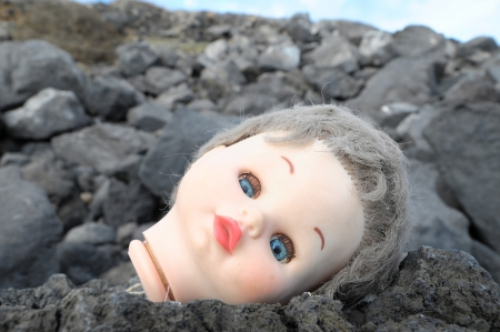 One Ancient Dool s Head Abandoned on the Rocks photo