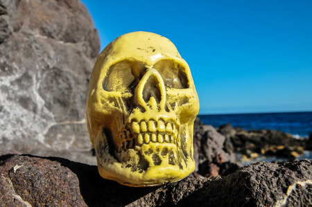 Ancient Vintage Human Skull Head on the rocks photo
