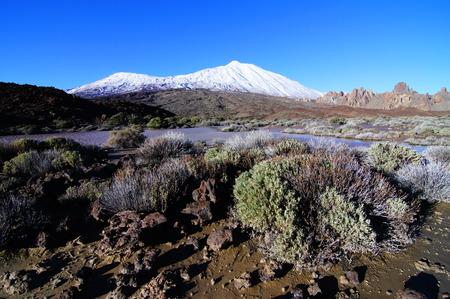 hummock: Backlight Sunbeams and Snow on Teide Tenerife Canary Islands