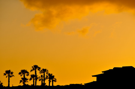 Sunset Scene at Tropical Beach Resort Silhouette photo