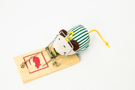 Wooden Mouse Trap on a White Background photo