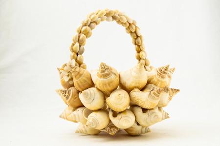 beachcomb: Handmade Textured Shells Vase on a White Background