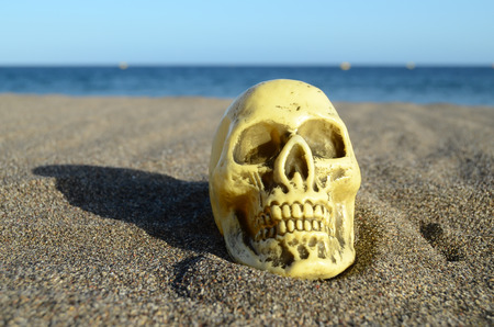 Human Skull on the Sand Beach near Ocean photo