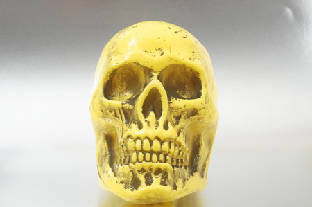 An Ancient Yellow Skull on a Colored Background photo